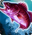 Real Fishing Pro 3D cho Android