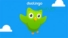 Học tiếng Anh bằng Duolingo trên máy tính