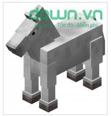Horse/ Donkey/ Mule