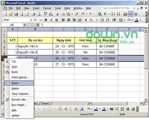 Hướng dẫn các thao tác với dòng cột sheet trong Excel