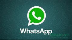 WhatsApp chính thức miễn phí và sẽ không hiển thị bất kỳ quảng cáo