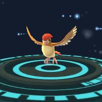 Hướng dẫn cách nâng cấp và tiến hóa Pokémon trong Pokémon GO!